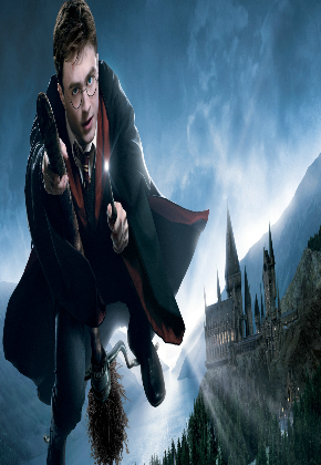Nadruk harry potter